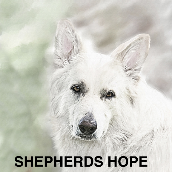 SHEP_HOPE_Prints